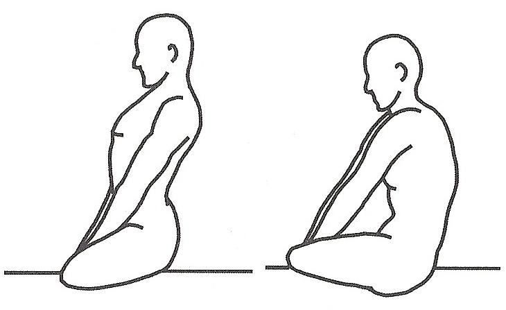 spine | Life On Yoga